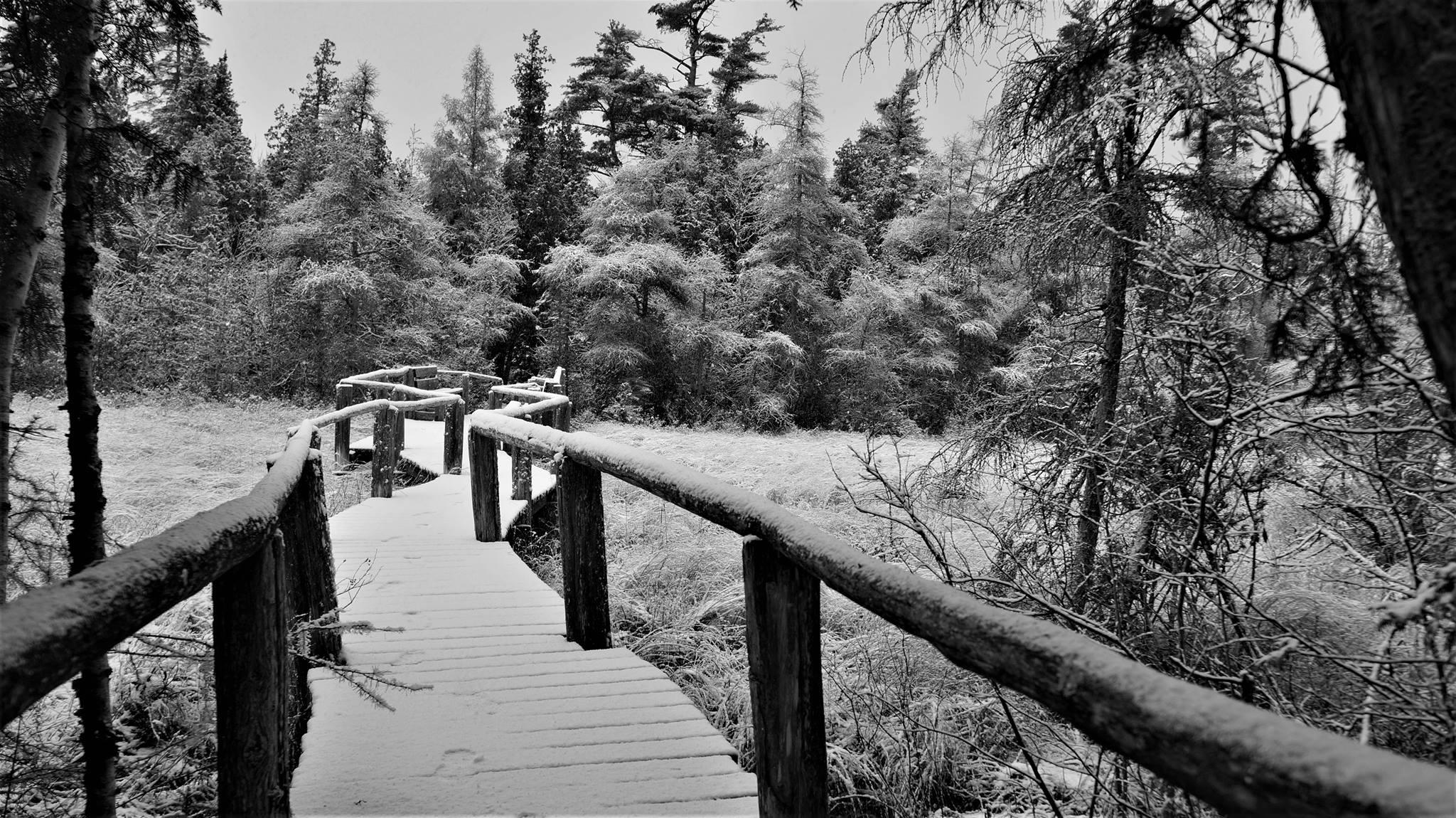 Winter Escape to Wisconsin's Door Peninsula – Jill Dutton